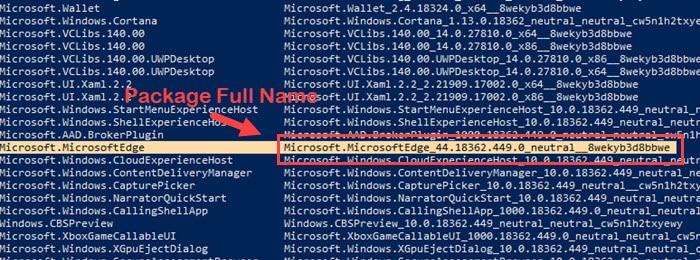Microsoft_edge_package_name