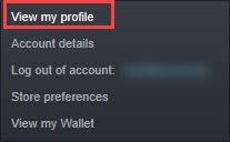 view_profile_on_steam